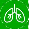 icona-polmoni